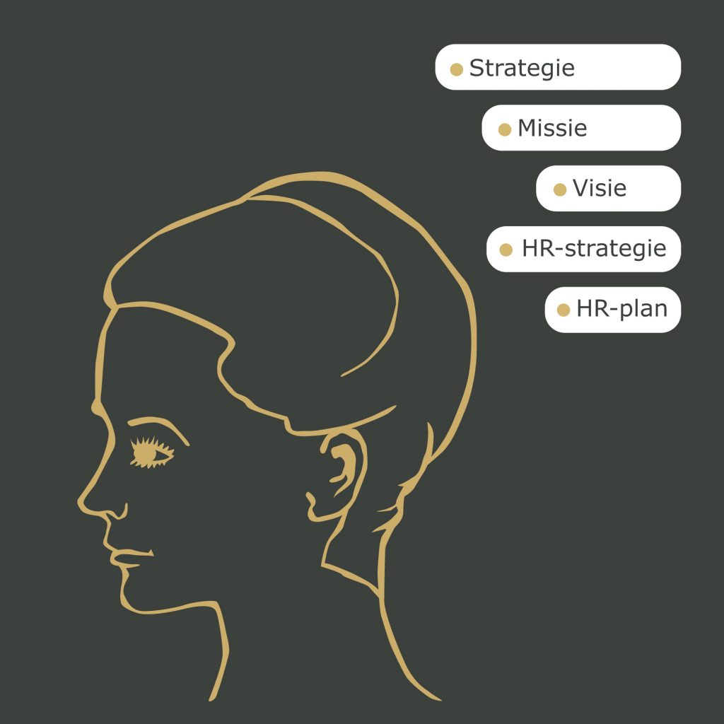 4 pijlers Strategisch